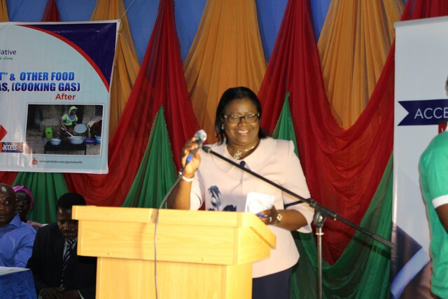 Another speech at the GTHI's launch of Project Mama Put